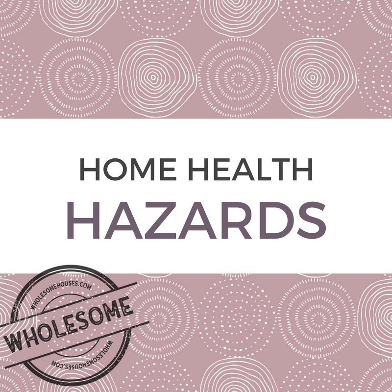 Home Health Hazards by WholesomeHouses.com