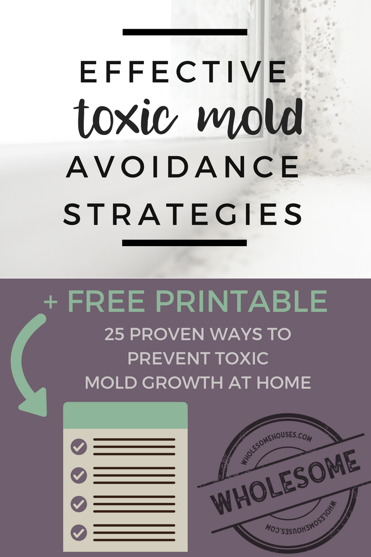 How to Prevent Mold at Home by WholesomeHouses.com